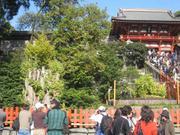 Kamakura_20101128_35